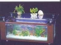 Table Aquarium CF 1200-A