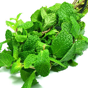 Peppermint-oil1-2 Extract