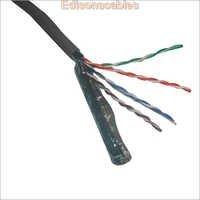 Cat  5 & Cat 6 Cables