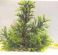 MJ 3348 AQUARIUM PLASTIC PLANT