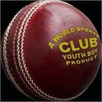 Club Cricket Balls