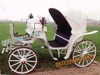 White Victoria Horse Drawn Baghi