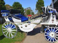 White Blue Victoria Horse Carriage