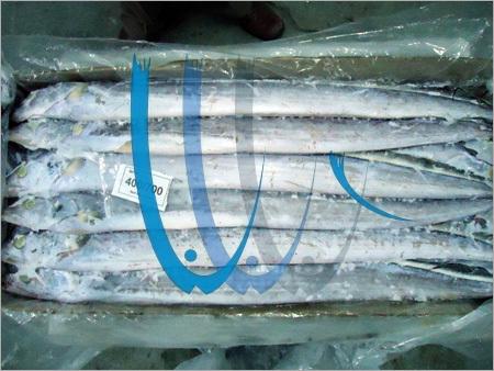 Sea Frozen Ribbon Fish