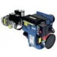 Ecoflam Gas Burners BLU 250