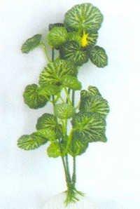 Barwell Plant E 1005