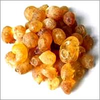 Talha Arabic gum