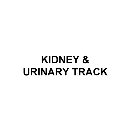 Kidney & Urinary Tract