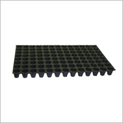 Seedling Agricultural Tray