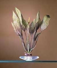 PENN PLAX PLANT M FLOWER LACE