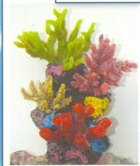 MPS Coral Plant 9611  A