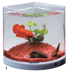 kw Dophin Mini Betta Tank T-101