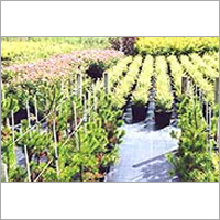 Agricultural Ground Cover
