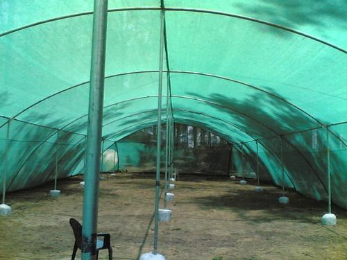 Vegetables green shade net for farm