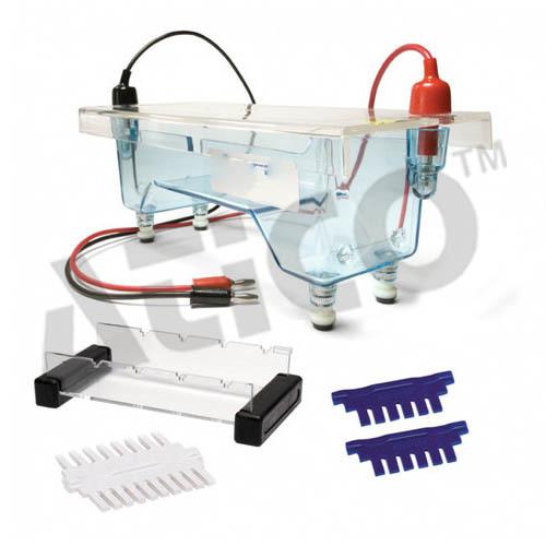 Immuno Electrophoresis Apparatus