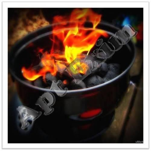Ecological Charcoal Briquette