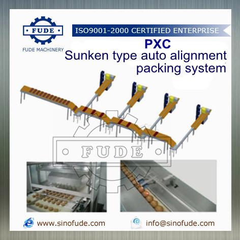 Sunken Type Auto Alignment Packing Machine