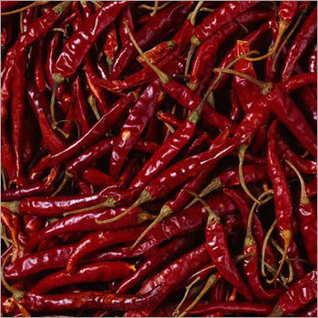 Indian Red Chillies