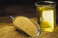 Soyabean Oil Plant