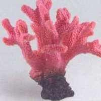 MPS Artificial Coral SH 055 PI