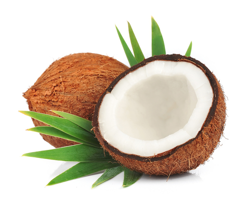 Coconut Milk Protein