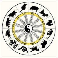 Zodiac 12 Cycle Chinese