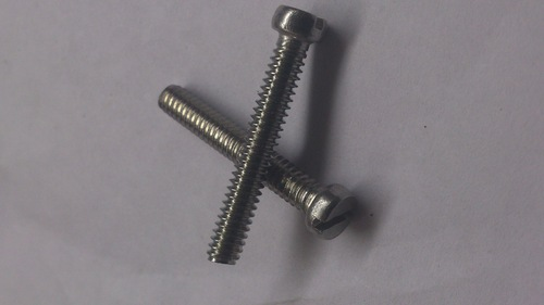 SS Screw