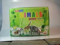 Animals Activity Cards