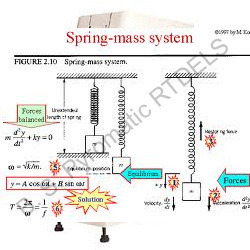 Forced Spring Mass System