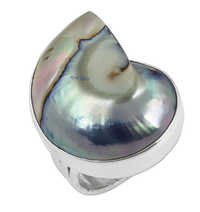 Excellent New Fashion Shell Silver Gemstone  Ring