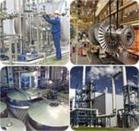 API Plant