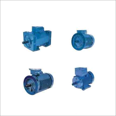 Low Voltage Electric Motors