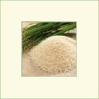 Vegetable Kurma Ghee Rice