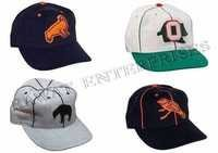 Polo Fashion Caps