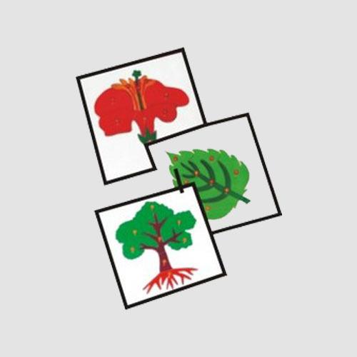 Botany Puzzles