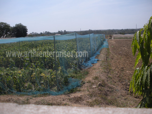 Anti Bird Net For Agriculture