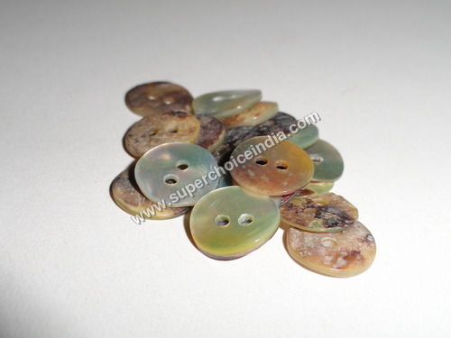 Natural Akoya Shell Buttons