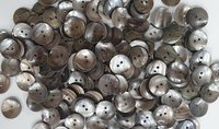 Indian River Shell Buttons