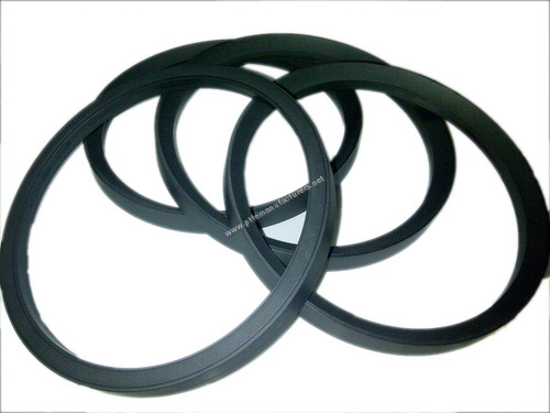 Carbon Filled PTFE Ring