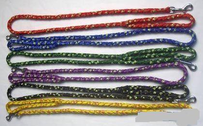 022013 Dogs Leash & Collars