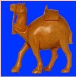 CAMEL PLAIN SPL