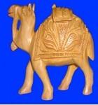 CAMEL CARVEN SPL