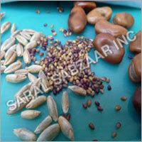 Green Manuring Seeds