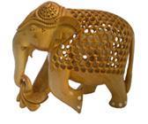 ELEPHANT LEG TURN UNDERCUT BWM