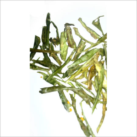 Dehydrated Green Chili Flakes
