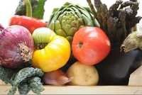 Vegetable Testing Services