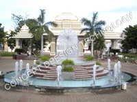 Dandelion with foam jet fountain