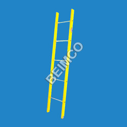 Single Section Wall Supported Ladder