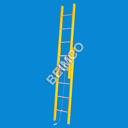 Wall Supported Extension Type Ladder