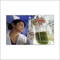 Fermentor Bioreactor Discovery